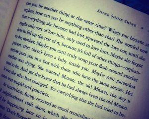 Passage from Shine Shine Shine by Lydia Netzer